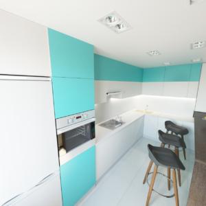 Дизайн-проект квартиры-студиии Запорожье кухня